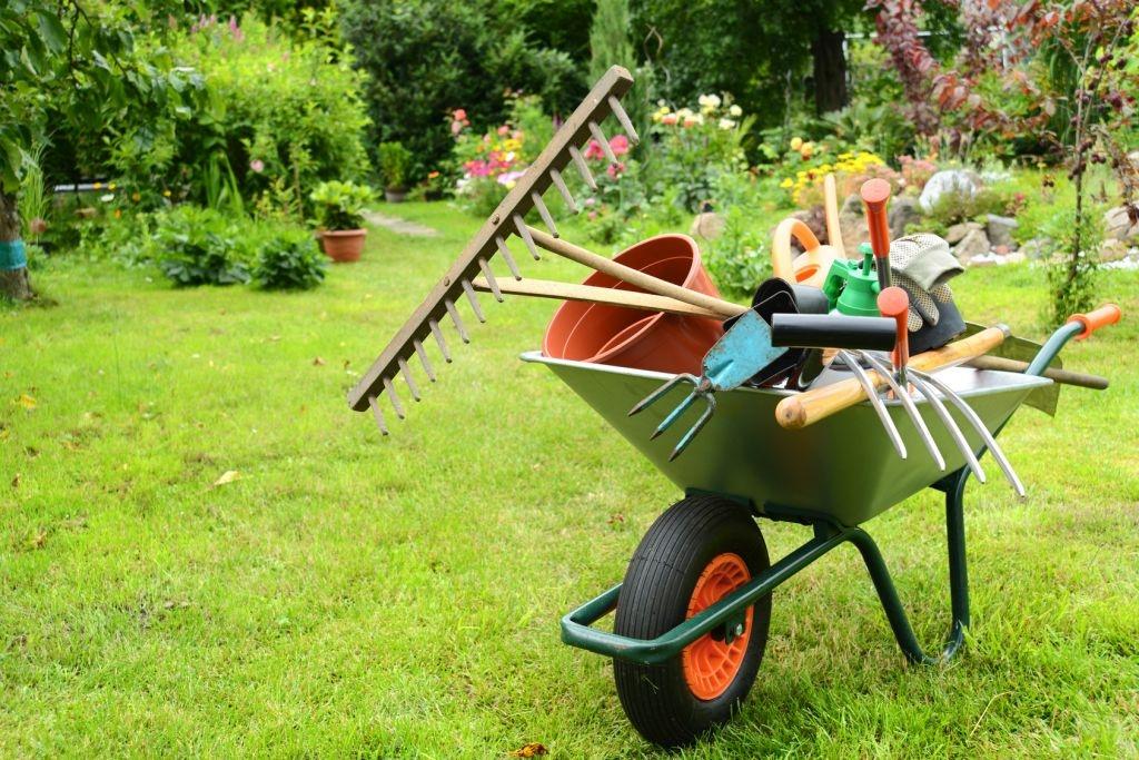 Verde Di Casa I Consigli Per I Lavori In Giardino